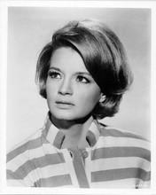Angie Dickinson original 8x10 inch photo 1967 Point Blank portrait
