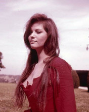 Claudia Cardinale looks beautiful in very low cut red dress 1960's 8x10 photo