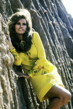 Raquel Welch smiling in yellow dress standing by mountain 4x6 inch photo