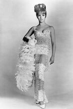 Ann-Margret 1960's full length glamour pose in two piece outfit 4x6 inch photo