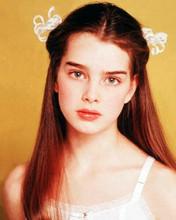 Brooke Shields portrait as Violet 1978 Louis Malle drama Pretty Baby 8x10 photo