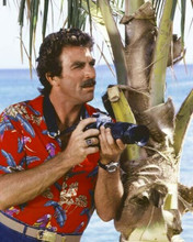 Tom Selleck in classic red Hawaiian shirt with camera by palm Magnum 8x10 photo