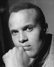 Harry Belafonte The King of Calypso activist & actor 1950's portrait 8x10 photo