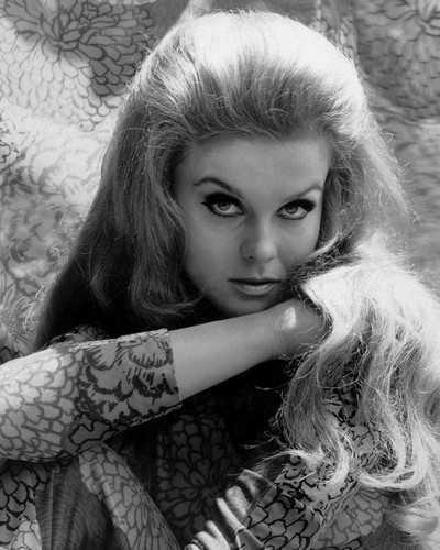 This is an image of Photograph & Poster of Ann-Margret 102846