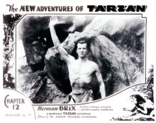 This is an image of Vintage Reproduction Lobby Card of The New Adventures of Tarzan 101811