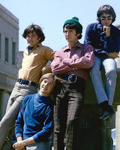 This is an image of Photograph & Poster of The Monkees 274430
