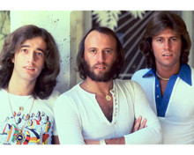 This is an image of Photograph & Poster of The Bee Gees 274274