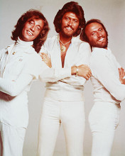 This is an image of Photograph & Poster of The Bee Gees 245129