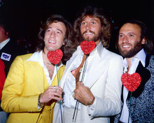 This is an image of Photograph & Poster of The Bee Gees 248653