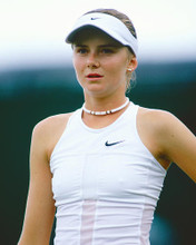 This is an image of Photograph & Poster of Daniela Hantuchova 253288