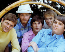 This is an image of Photograph & Poster of The Beach Boys 284151