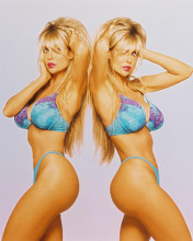 This is an image of Photograph & Poster of Barbi Twins 246339