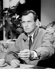 This is an image of Photograph & Poster of David Janssen 102947