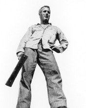This is an image of Photograph & Poster of Paul Newman 103031