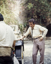 This is an image of Photograph & Poster of Peter Falk 298559