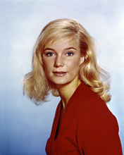 This is an image of Photograph & Poster of Yvette Mimieux 298608