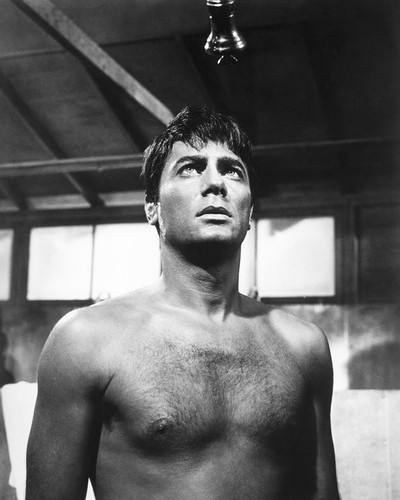 This is an image of Photograph & Poster of Tony Curtis 103156