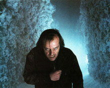 This is an image of Photograph & Poster of Jack Nicholson 298613