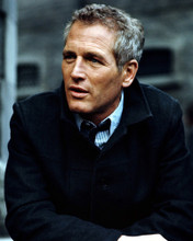 This is an image of Photograph & Poster of Paul Newman 298527