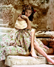 This is an image of Photograph & Poster of Jean Peters 298529