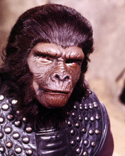 This is an image of Photograph & Poster of Planet of the Apes (tv) 298518