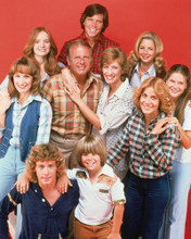 This is an image of Prints & Posters of Eight is Enough 298646