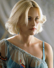 This is an image of Prints & Posters of Patricia Arquette 298654