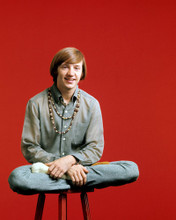 This is an image of Prints & Posters of Peter Tork 298973