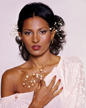 This is an image of Prints & Posters of Pam Grier 299058