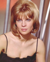 This is an image of Prints & Posters of Julie Christie 299069