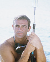 This is an image of Prints & Posters of Sean Connery 299071