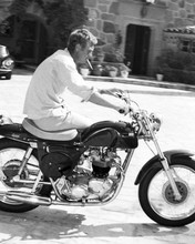 This is an image of Prints & Posters of Steve McQueen 103540