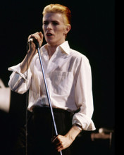 This is an image of Prints & Posters of David Bowie 299451