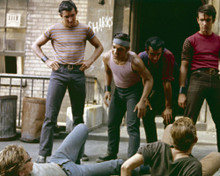 This is an image of Prints & Posters of West Side Story 299329