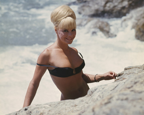 This is an image of Prints & Posters of Elke Sommer 299578