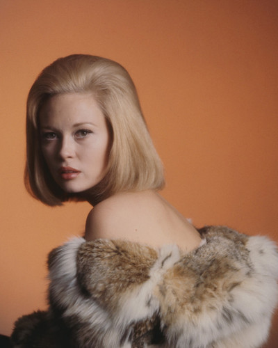 This is an image of Prints & Posters of Faye Dunaway 299613