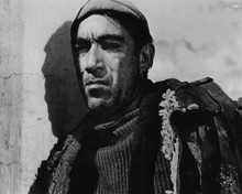 This is an image of Prints & Posters of Anthony Quinn 103823