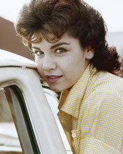 This is an image of Prints & Posters of Annette Funicello 201015