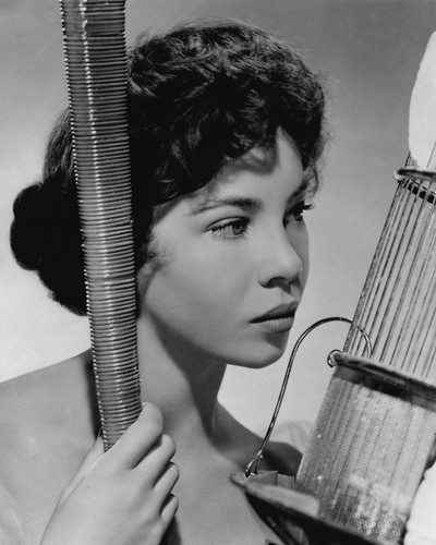 This is an image of Prints & Posters of Leslie Caron 104060