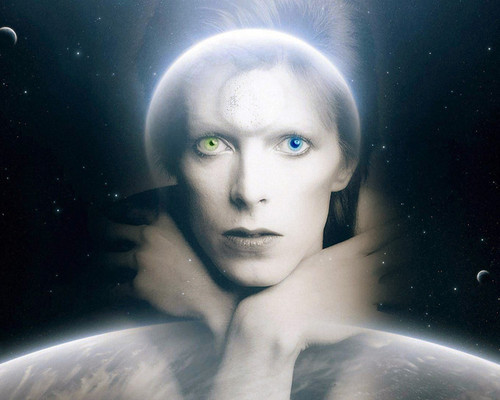 This is an image of Prints & Posters of David Bowie 201433