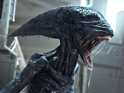 272346 alien Covenant movie print glossy poster fr