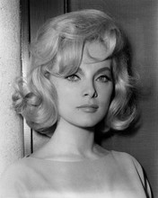 This is an image of Prints & Posters of Virna Lisi 104104