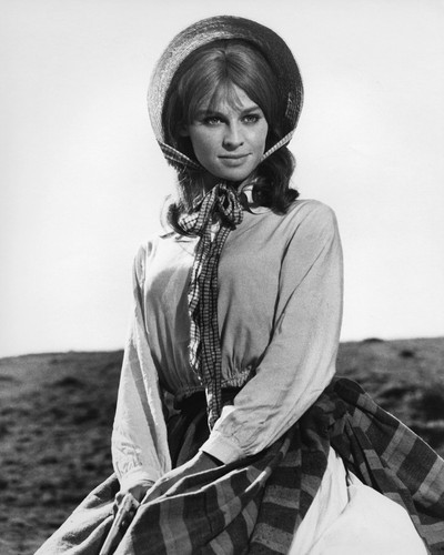 This is an image of Prints & Posters of Julie Christie 104132