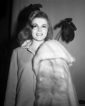 This is an image of Prints & Posters of Ann-Margret 104282