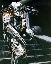 This is an image of Prints & Posters of Predator 201823