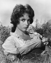 This is an image of Prints & Posters of Linda Cristal 104341