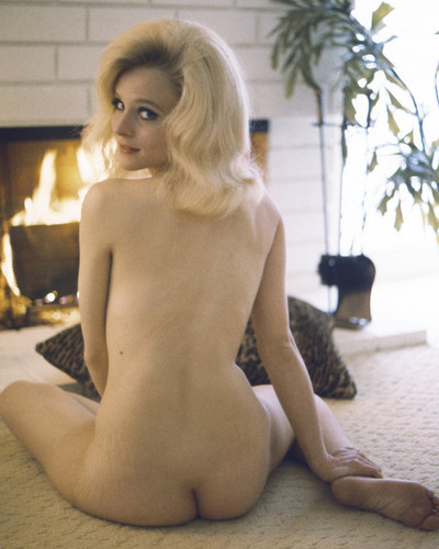 This is an image of Prints & Posters of Diane McBain 202178