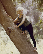 This is an image of Prints & Posters of Susan Oliver 202242