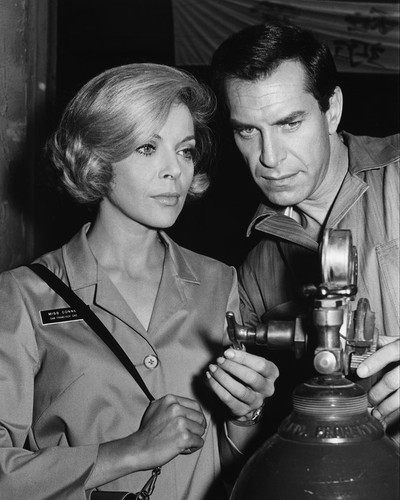 This is an image of Prints & Posters of Martin Landau and Barbara Bain 104511