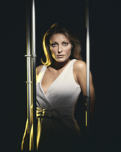 This is an image of Prints & Posters of Sharon Tate 202421